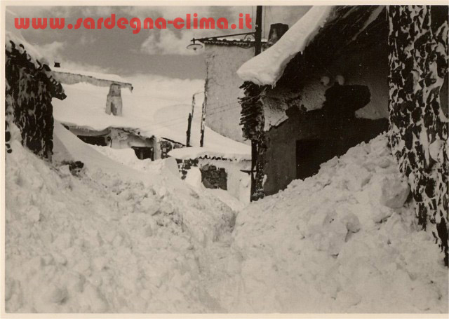 1956_1small