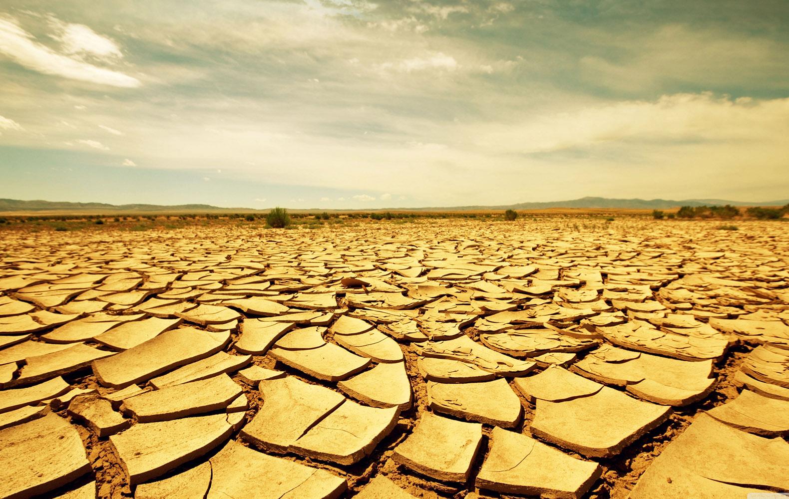 dry earth02